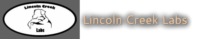 Lincoln Creek Labs